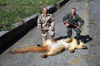 Rat-hunter-gi-joe