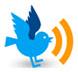 Twitter-rss-bird