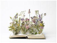 Flowersonbook