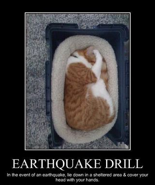 Earthquake-drill