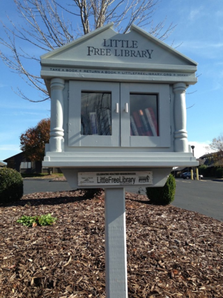 Littlefreelibrary08