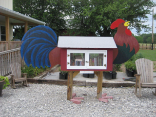 Littlefreelibrary06