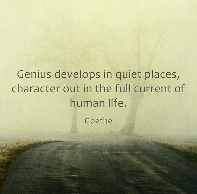 Genius-develops-in-quiet