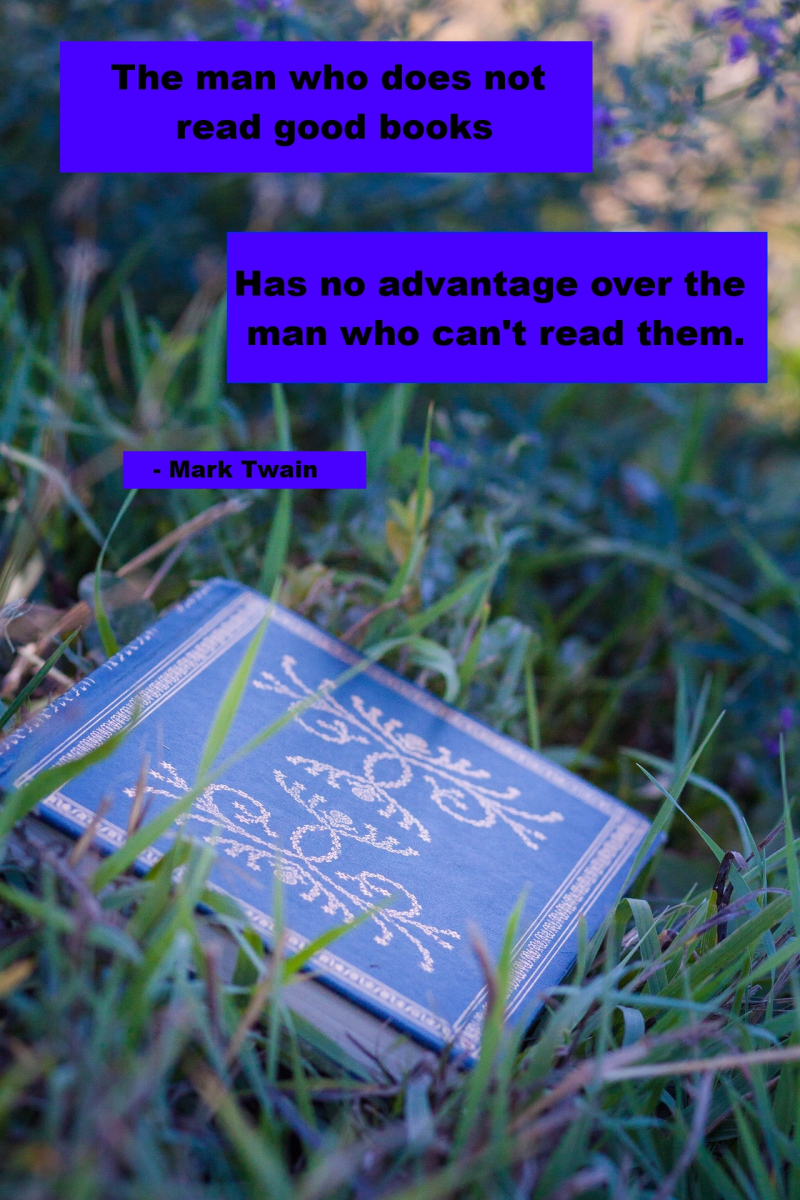 Mark Twain Book quote