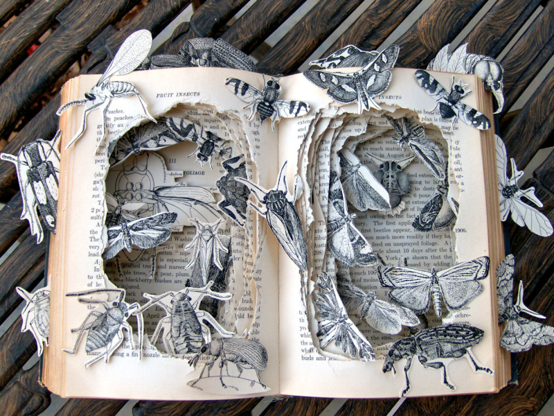 Book Art by Kellly Berry
