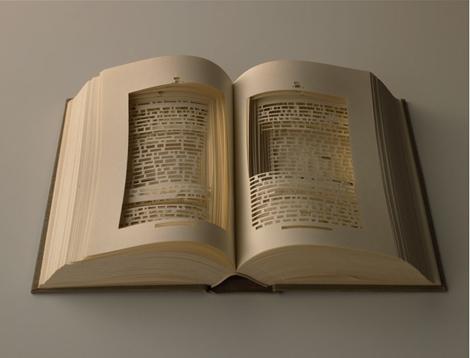 Ryuta Iida Book Carvings