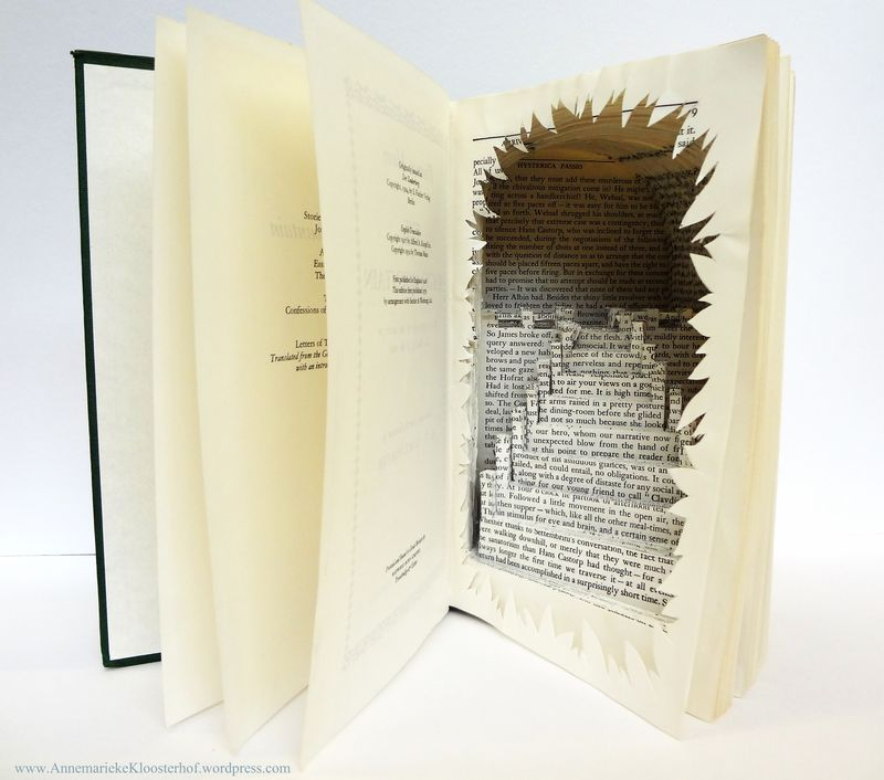 Book-Art by Annemarieke Kloosterho
