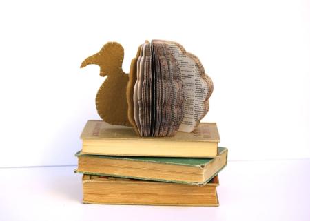 Dictionary Book Turkey