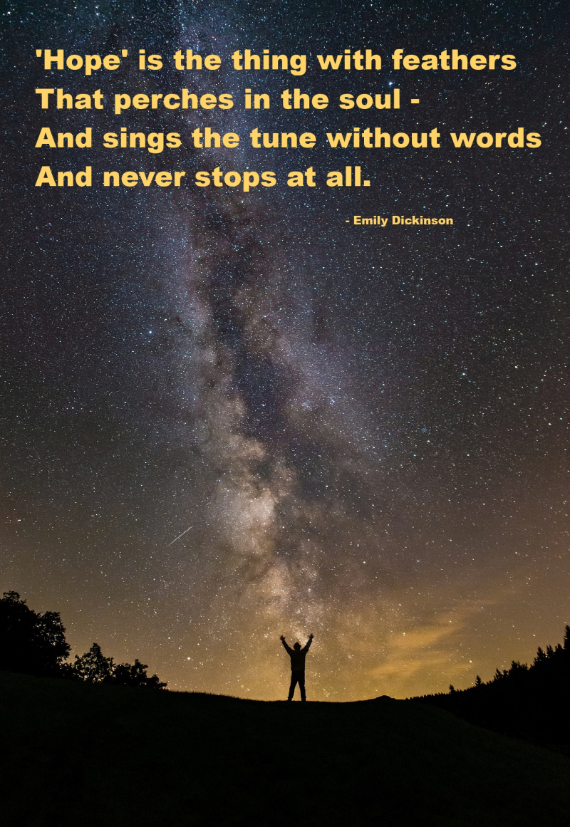 Emily Dickinson Hope Quotation