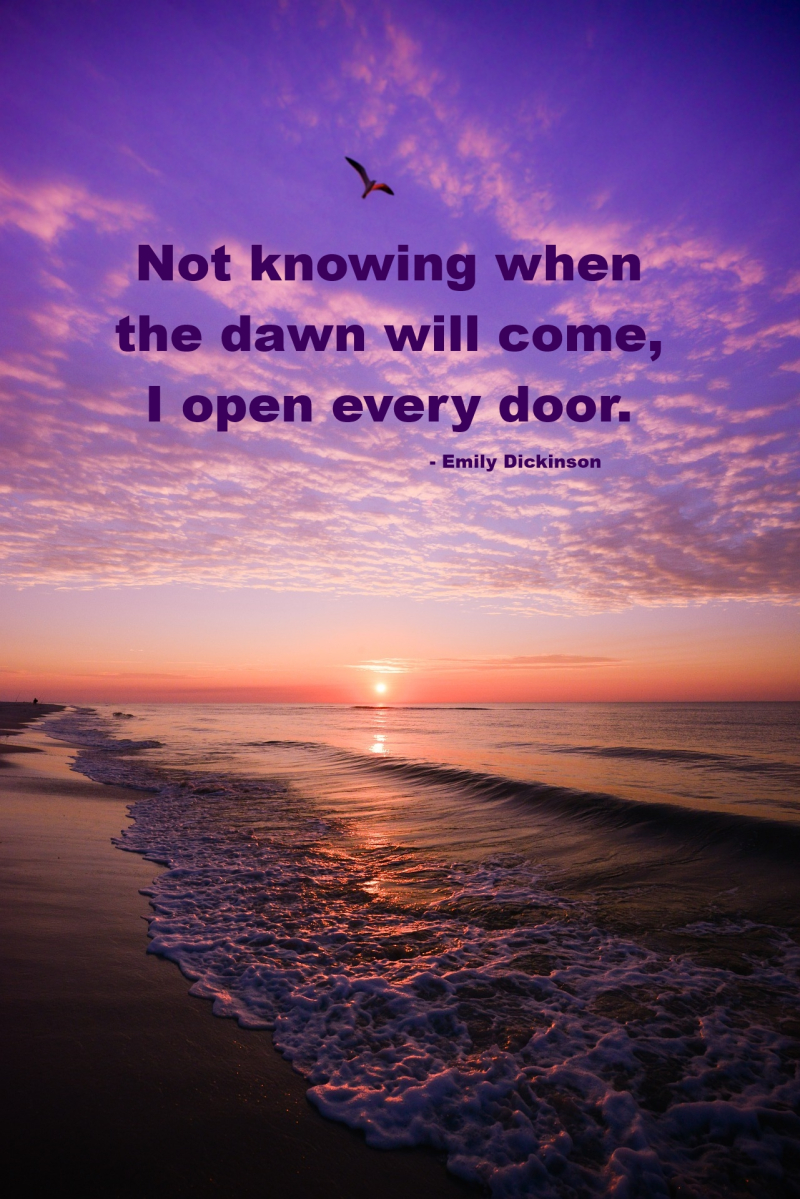 Not Knowing When the Dawn Will Come I Open Every Door