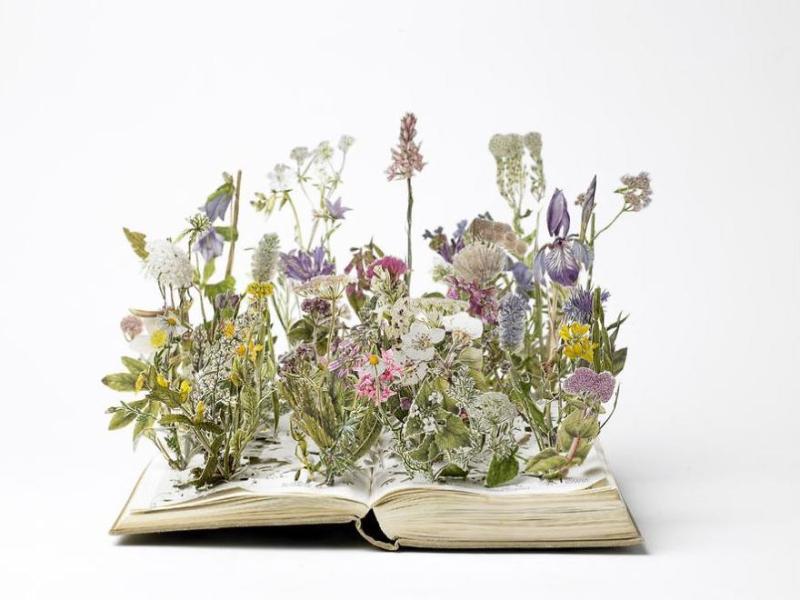 Flowering Book Sculpure