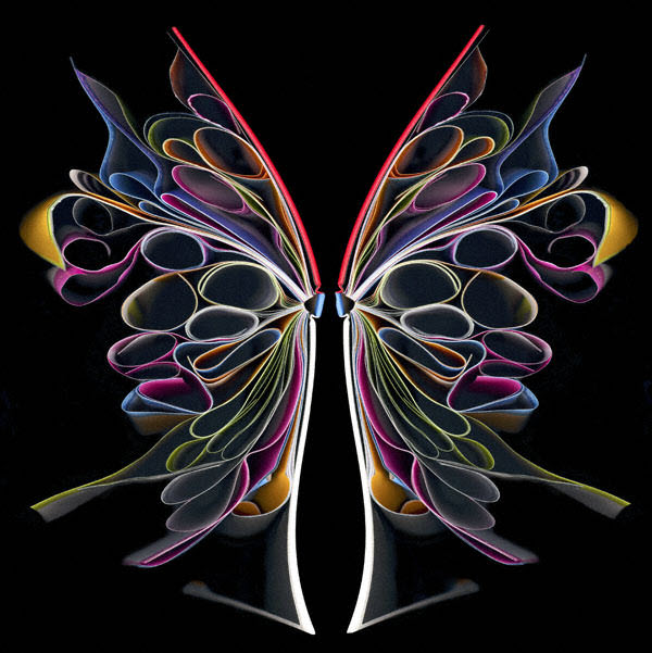 Butterly by Cara Barer